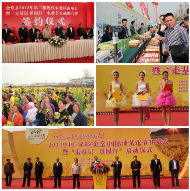 2012年中国成都(金堂)国际油菜花节